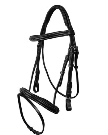 Bridles & more