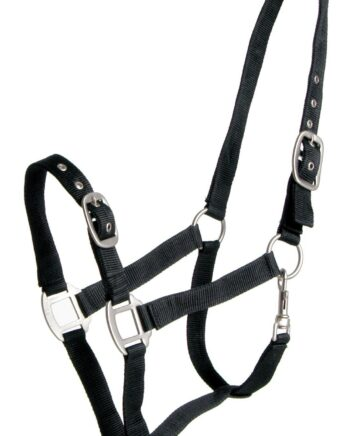 Halters & ropes